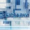 Выставки в Березайке