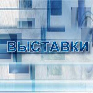 Выставки Березайки